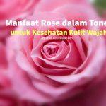 9 Manfaat Rose Toner untuk Kesehatan Kulit Wajah